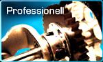 professionell